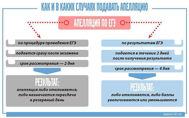 Инфографика: Апелляция на ЕГЭ