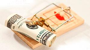 Минобрнауки займётся популяризацией образовательных кредитов