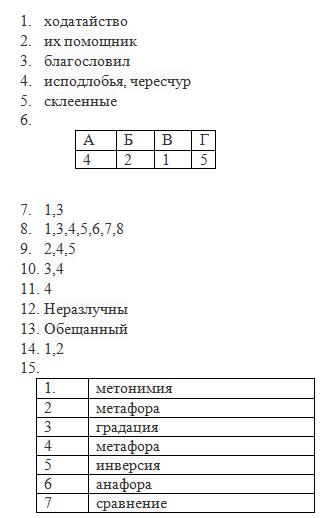 Вариант по русскому языку