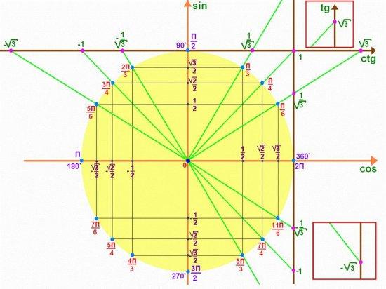 Тригонометрический круг: значения синусов, косинусов, тангенсов, котангенсов