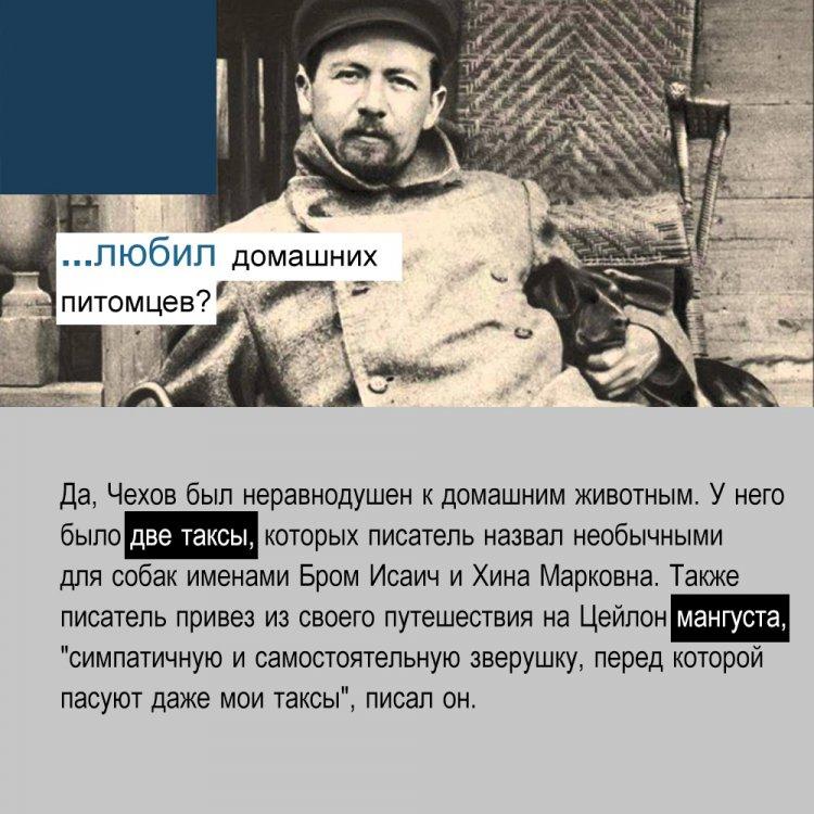 5 фактов о Антоне Павловиче Чехове